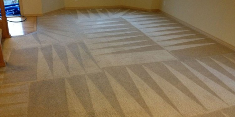Carpet And Padding