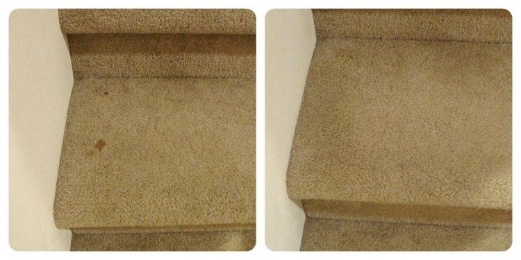Homemade Carpet Spot Cleaner