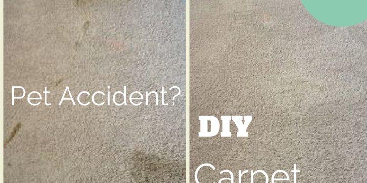 Diy carpet odor removal