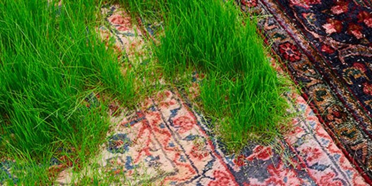 Persian rugs | Inhabitat