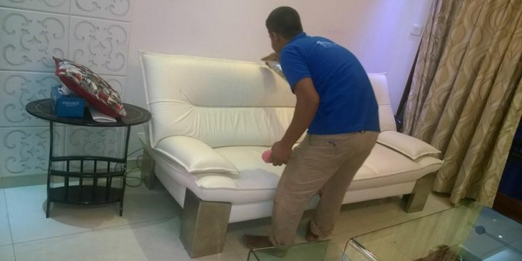 Sofa / Carpet Shampooing