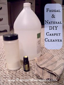 do-it-yourself Natural Carpet Cleaner
