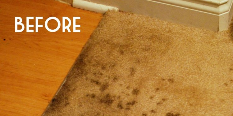 Carpet cleaning Tips vinegar