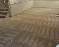 New carpet Installation